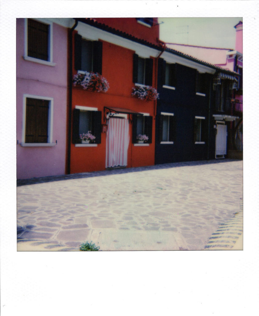 Visite paisible - Polaroid 636 - Film IP 600 - 06/2017